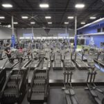 Best Gyms In Edmonton & All Things Working Out