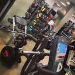 Best Gyms In Palermo & All Things Working Out